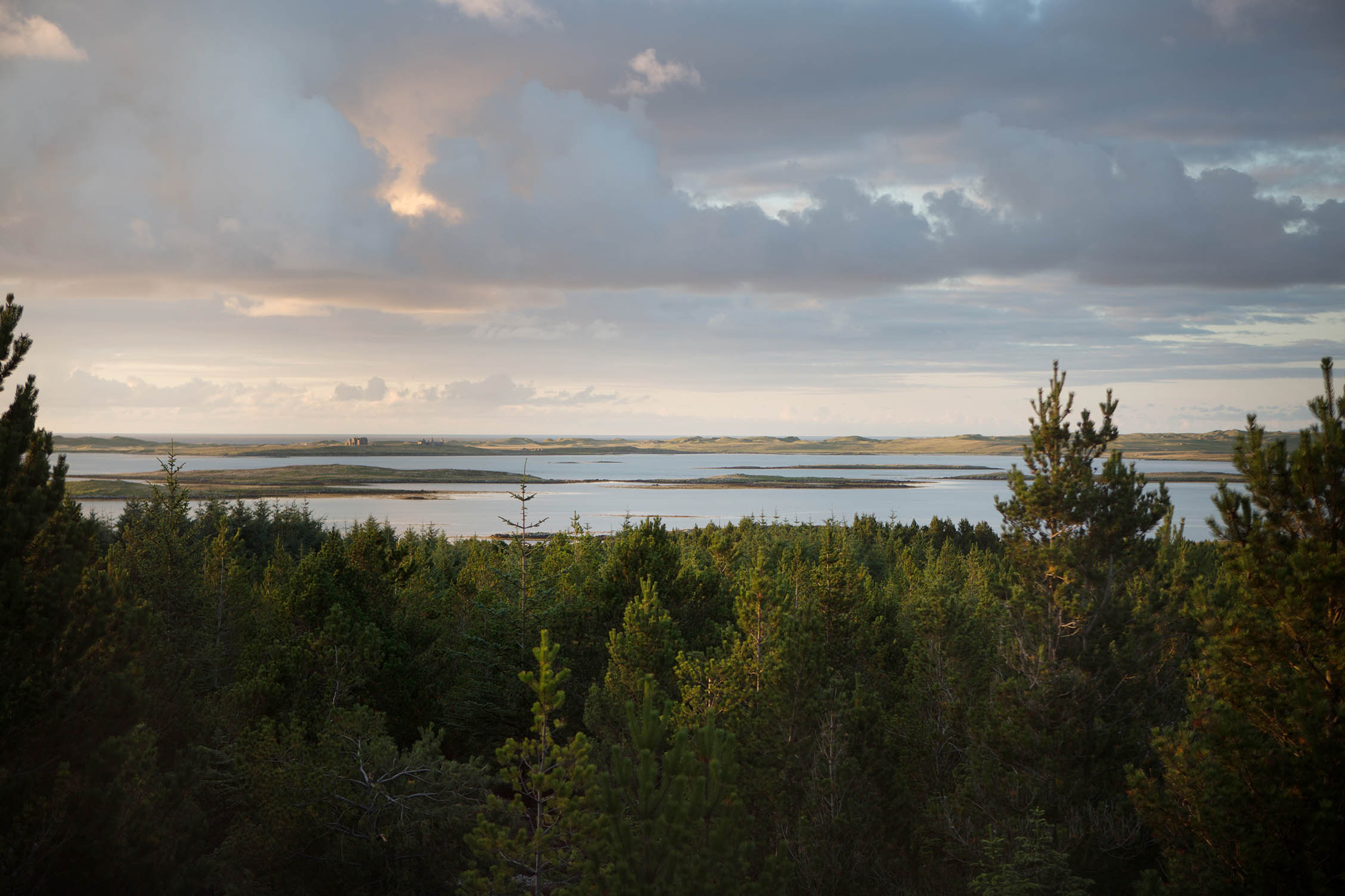 uist forest retreat029