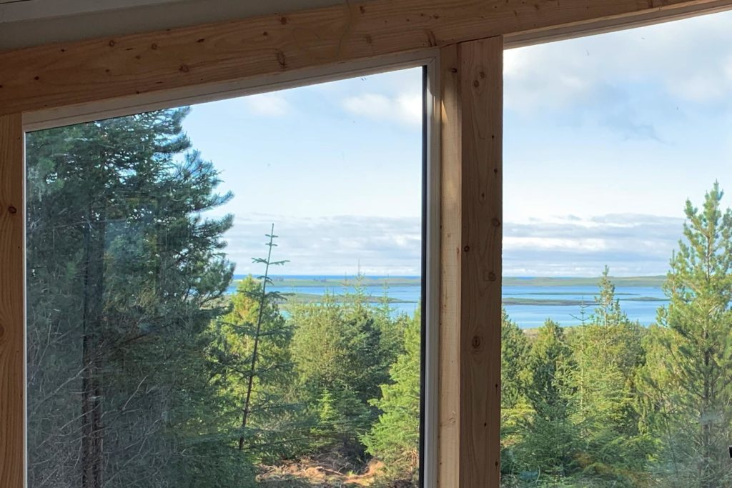 sea views from treehouse
