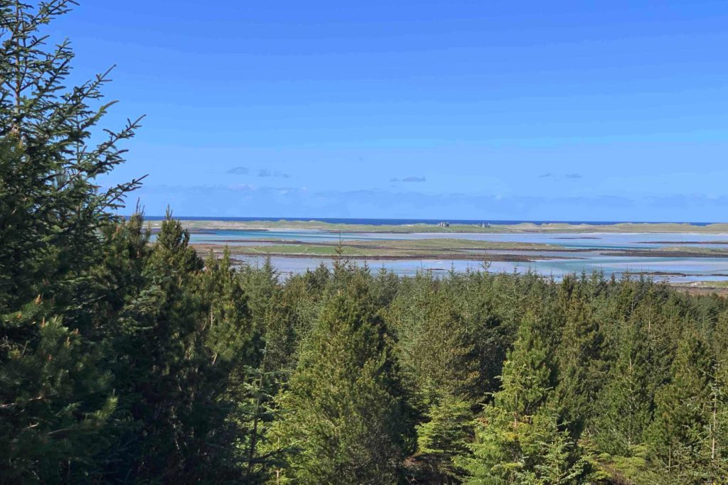 View from treehouse on North Uist